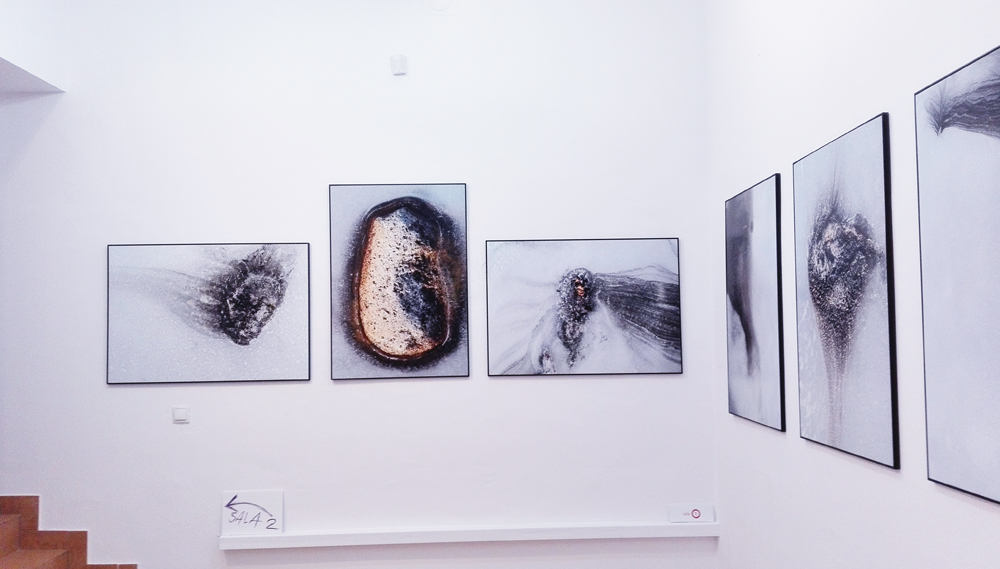 wernisaz-wystawy-henryka-ciruta-z-olsztyna-w-warszawie-27-09-2016_05